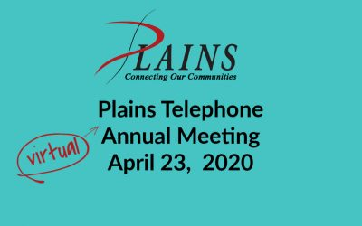 Our 2020 Annual Meeting